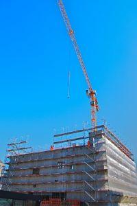 1170115_crane.jpg