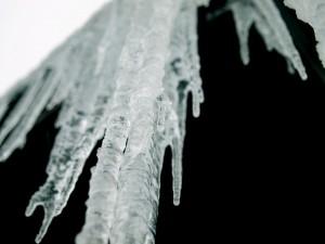 1272047_snow