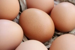 1283295_eggs_2.jpg