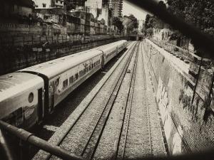 1295277_tren.jpg