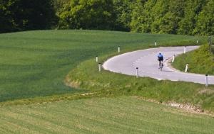 1347817_biker_in_the_curve.jpg