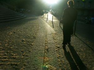 329822_shadows_3.jpg