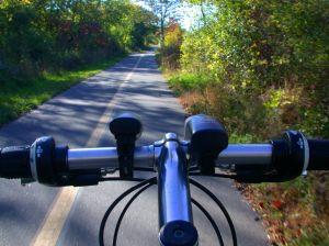 480131_bike_path.jpg