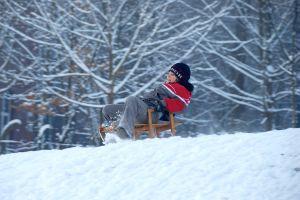 boy-on-the-sledge-5-1134783-m.jpg
