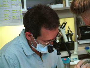 dentalseries-2-80921-m.jpg