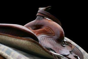 western-saddle-941483-m.jpg