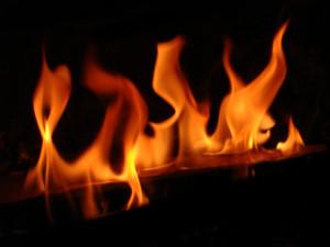 fuego-1178889-300x225
