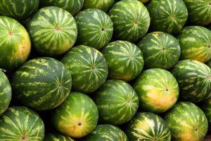 Watermelon-300x200